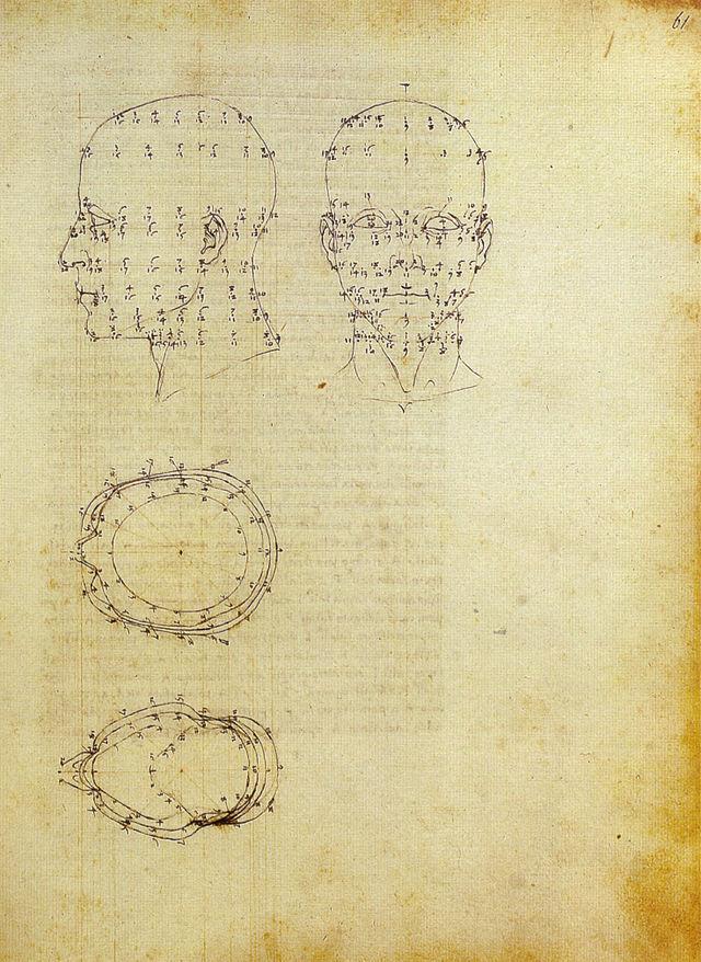 640px-Piero,_proiezioni_di_una_testa_scorciata_dal_de_prospectiva_pingendi,_ante_1482,_milano,_biblioteca_ambrosiana