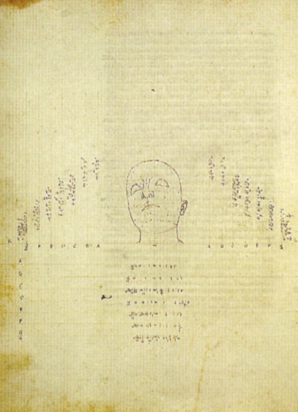 Piero,_disegno_di_una_testa_scorciata_dal_de_prospectiva_pingendi,_ante_1482,_milano,_biblioteca_ambrosiana